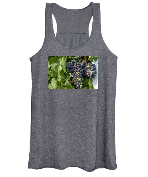 Red Wine Grapes On The Vine Women's Tank Top