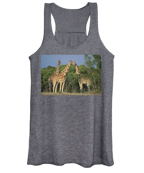 Reticulated Giraffe Trio Women's Tank Top