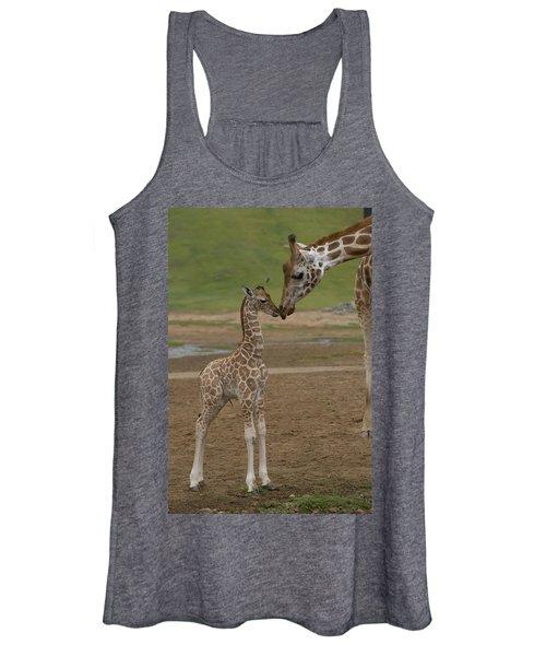 Rothschild Giraffe Giraffa Women's Tank Top