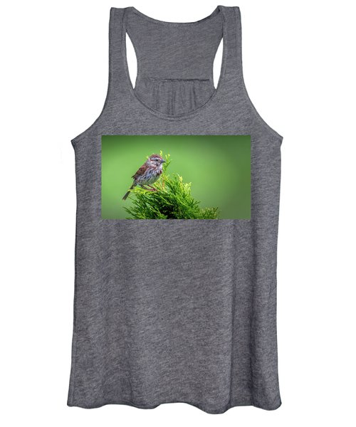 Song Sparrow Perched - Melospiza Melodia Women's Tank Top