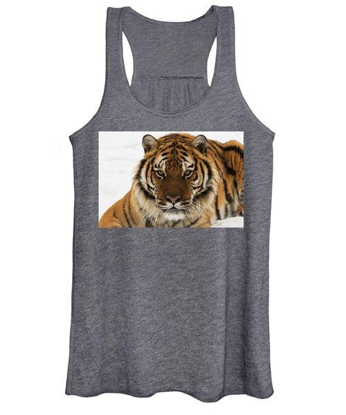 Tiger Stare Women's Tank Top