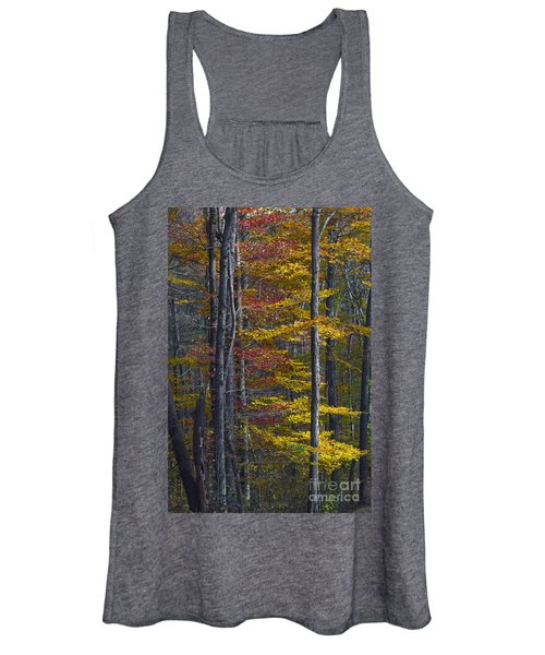 Trees With Autumn Colors 8260c Women's Tank Top