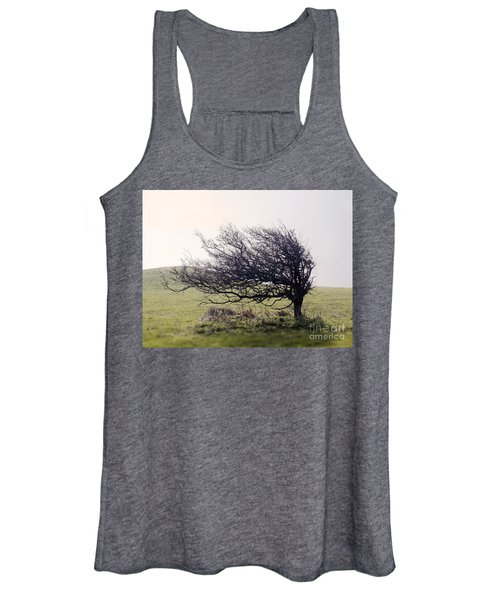Windswept Tree Women's Tank Top
