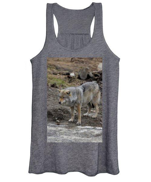 Wolf 1 Norway Women's Tank Top