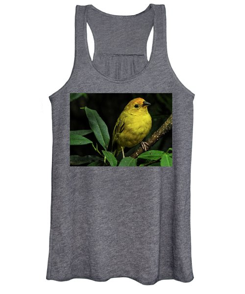 Yellow Bird Women's Tank Top