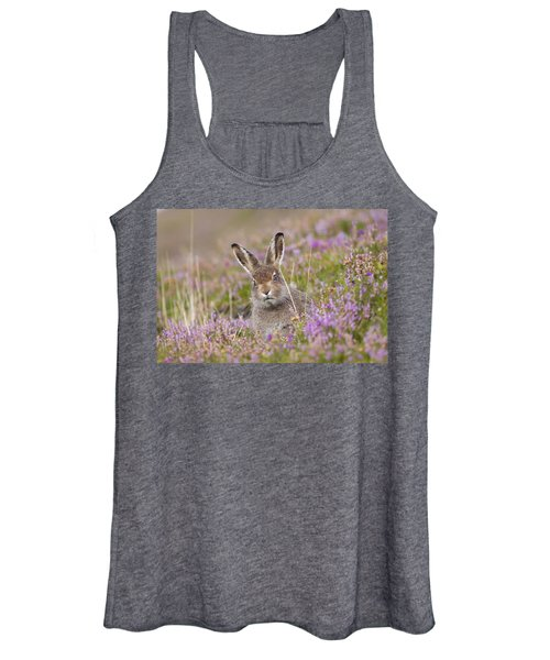 Young Mountain Hare In Purple Heather Women's Tank Top