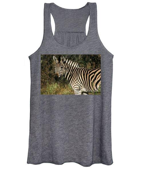Zebra Watching Women's Tank Top