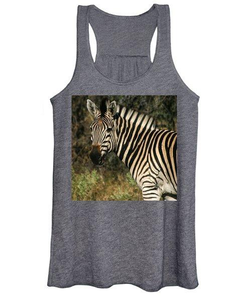 Zebra Watching Sq Women's Tank Top