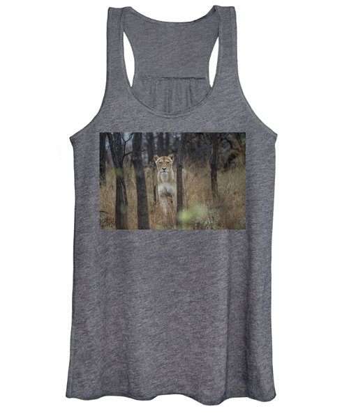 A Lioness In The Trees Women's Tank Top