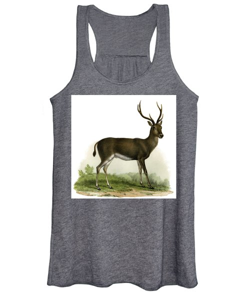 A Red Deer In A Landscape, 1860 Women's Tank Top