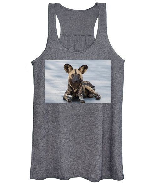 African Wild Dog Resting On A Road Women's Tank Top