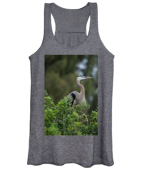 Great Blue Heron Portrait Women's Tank Top