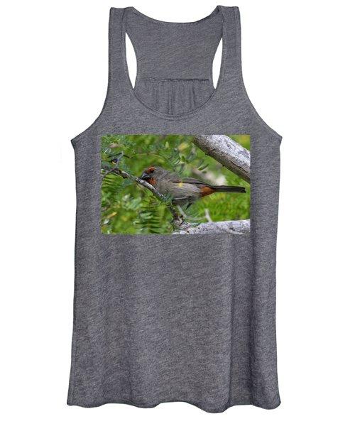 Greater Antillean Bullfinch Women's Tank Top