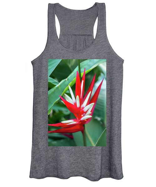 Red And White Birds Of Paradise Women's Tank Top