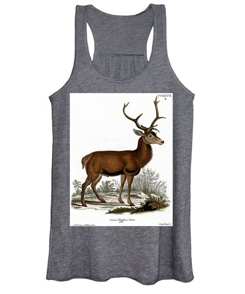 Red Deer Circa 19th Century Colored Engraving Women's Tank Top