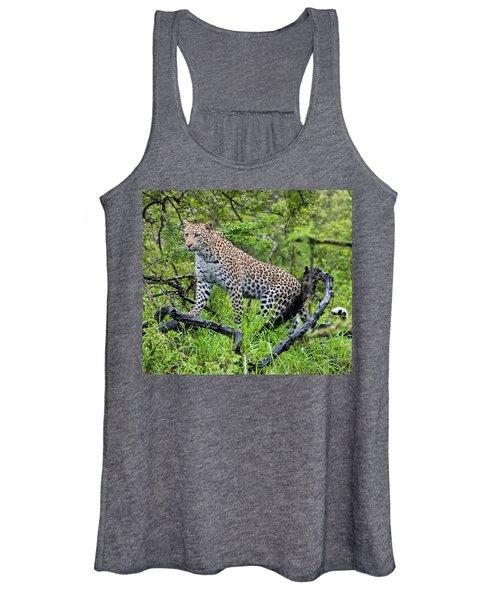 Tree Climbing Leopard Women's Tank Top