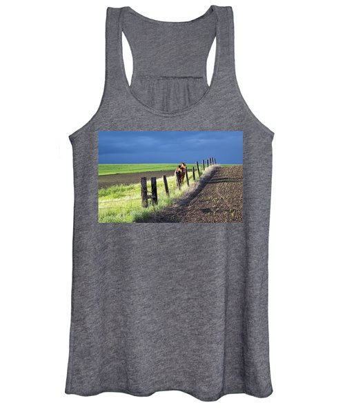 Two Horses In The Palouse Women's Tank Top