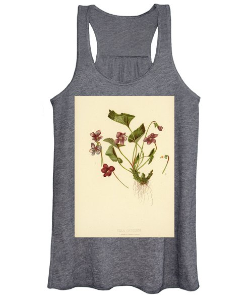 Viola Cucullata  Common Blue Violet Women's Tank Top