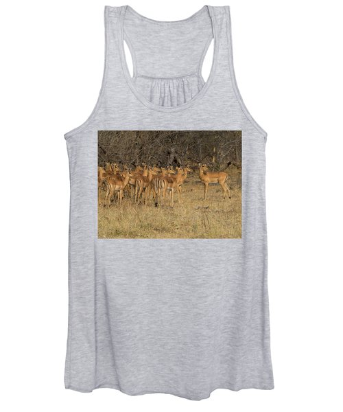 Herd Of Impalas Aepyceros Melampus Women's Tank Top