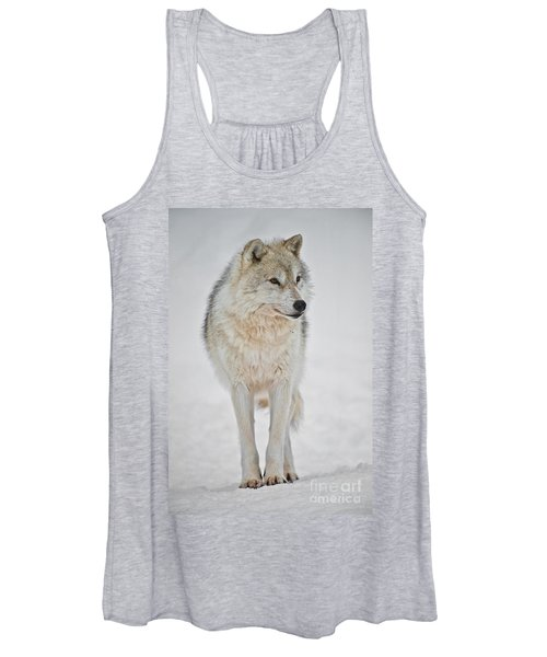Arctic Wolf Pictures 1146 Women's Tank Top