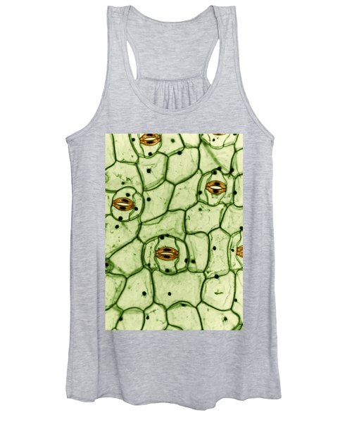 Guard Cells And Stomates In Spiderwort Women's Tank Top