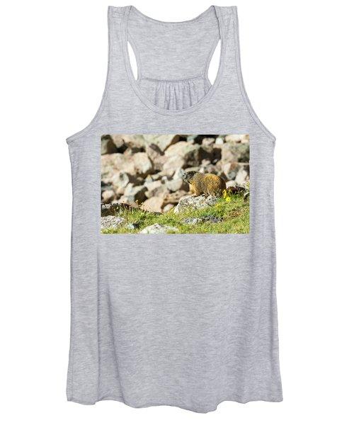 Marmot In Rocky Mountain National Park Women's Tank Top