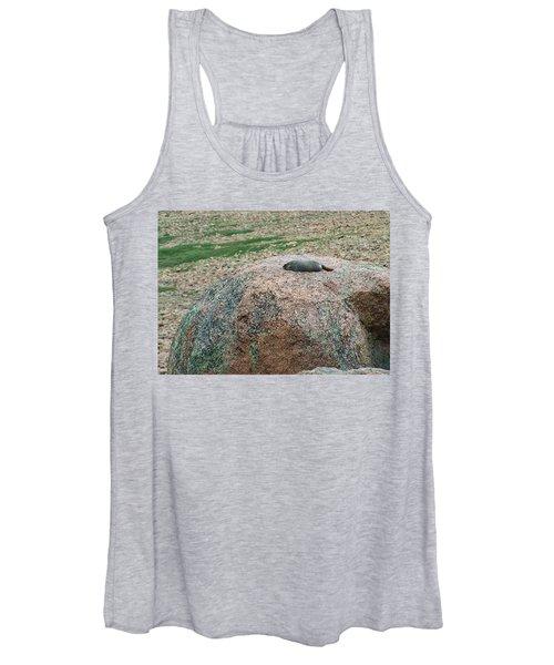 Marmot Resting On A Rock Women's Tank Top