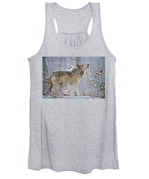 Timber Wolf Pictures 188 Women's Tank Top