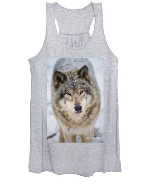 Timber Wolf Pictures 254 Women's Tank Top
