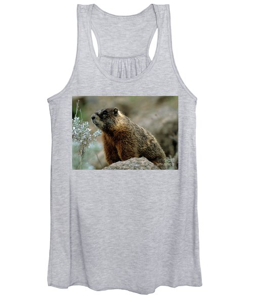 Yellow-bellied Marmot Women's Tank Top