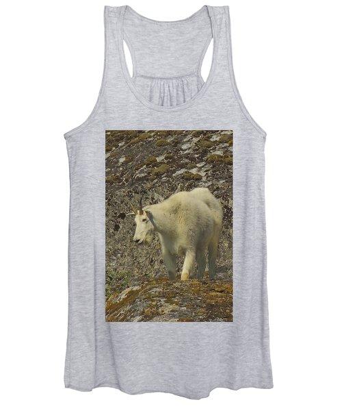 Mountain Goat Ewe Women's Tank Top
