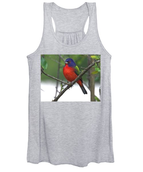 Painted Bunting Women's Tank Top