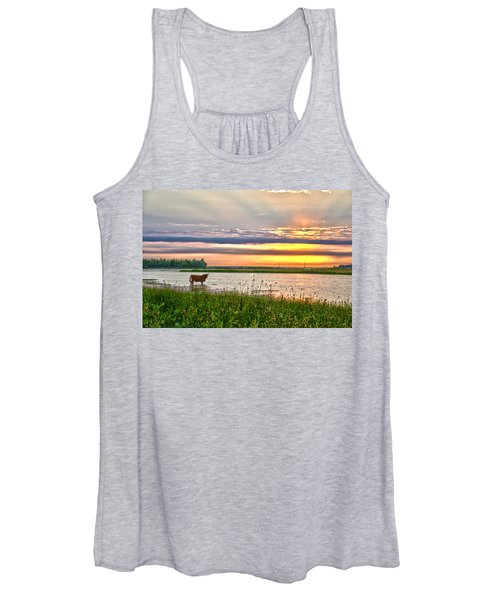 A Highland Cow In The Lowlands Women's Tank Top