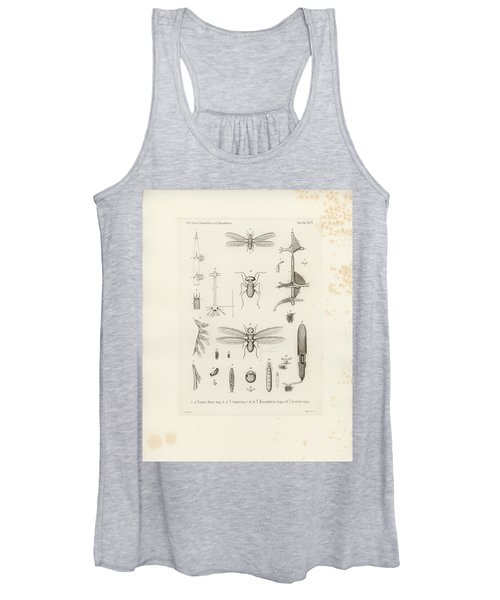 African Termites And Their Anatomy Women's Tank Top