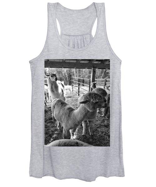 Alpaca Meeting  Women's Tank Top