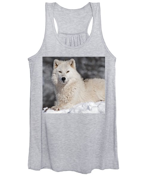 Arctic Wolf... Women's Tank Top