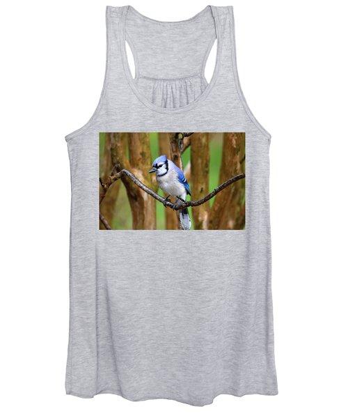 Blue Jay On A Branch Women's Tank Top