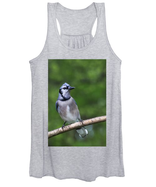 Blue Jay On Alert Women's Tank Top