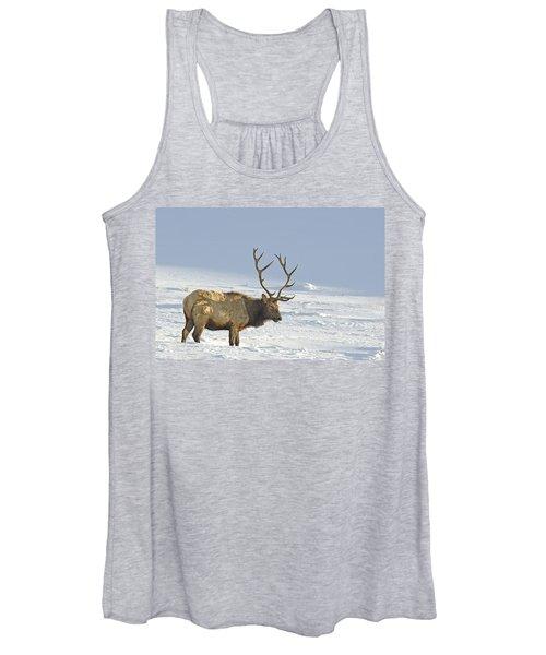 Bull Elk In Snow Women's Tank Top