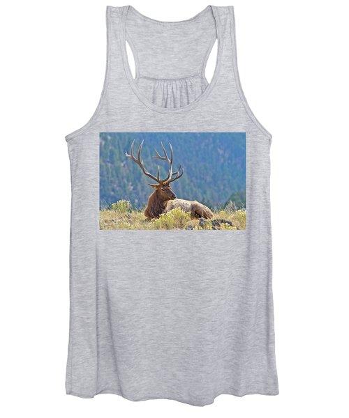 Bull Elk Resting Women's Tank Top