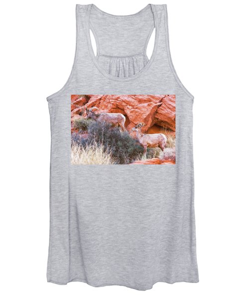Desert Bighorn Sheep  Women's Tank Top