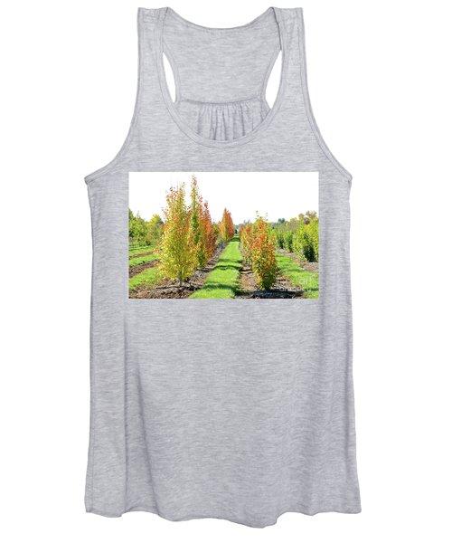 Fall On The Tree Farm Women's Tank Top