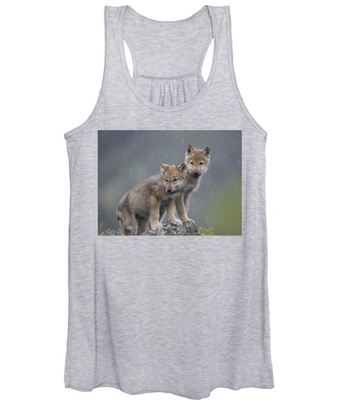 Gray Wolf Canis Lupus Pups In Light Women's Tank Top