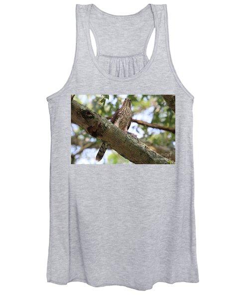 Hawk On A Branch Women's Tank Top