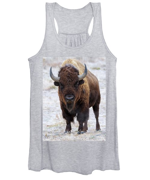 In The Presence Of Bison 3 Women's Tank Top