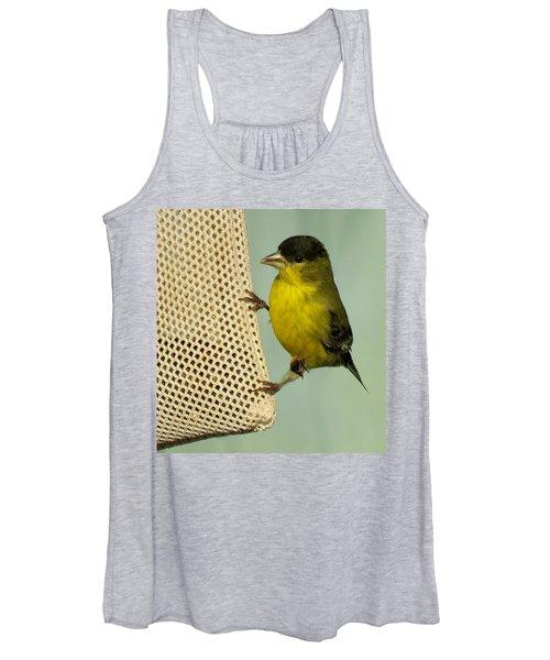 Male Goldfinch On Sock Feeder Women's Tank Top