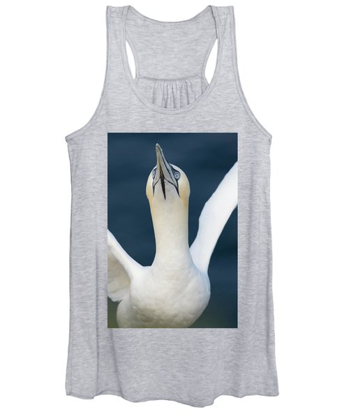 Northern Gannet Stretching Its Wings Women's Tank Top