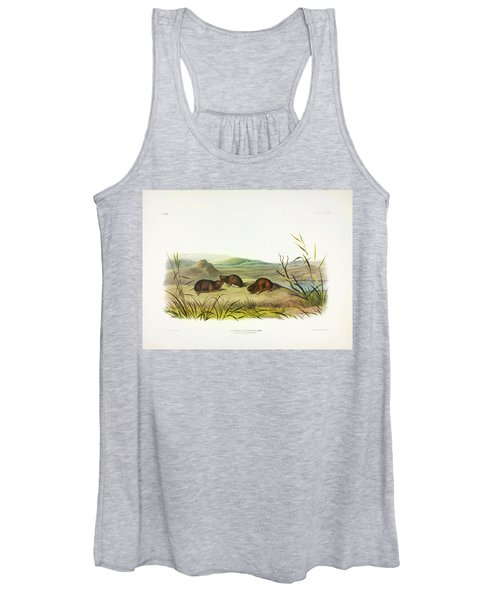 Northern Meadow-mouse Women's Tank Top