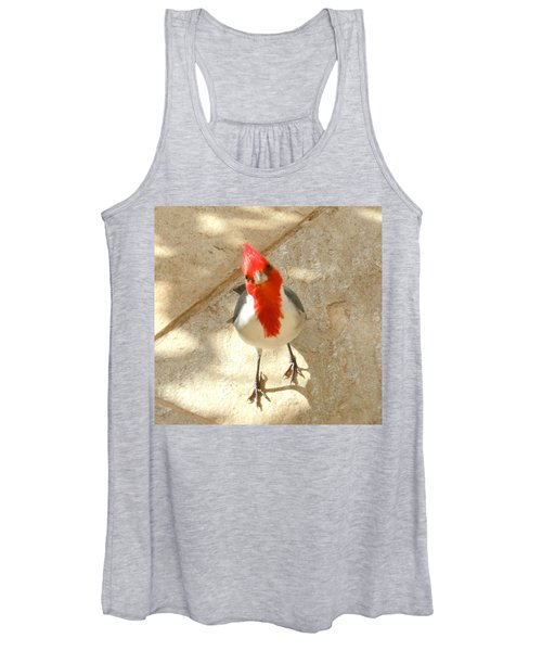 Red-crested Cardinal At My Feet Women's Tank Top
