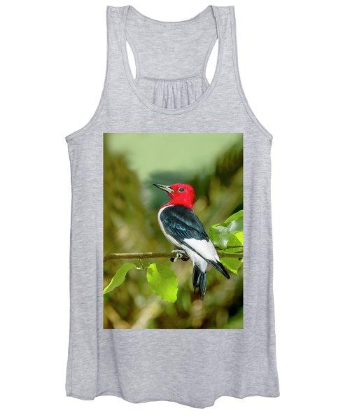 Red-headed Woodpecker Portrait Women's Tank Top